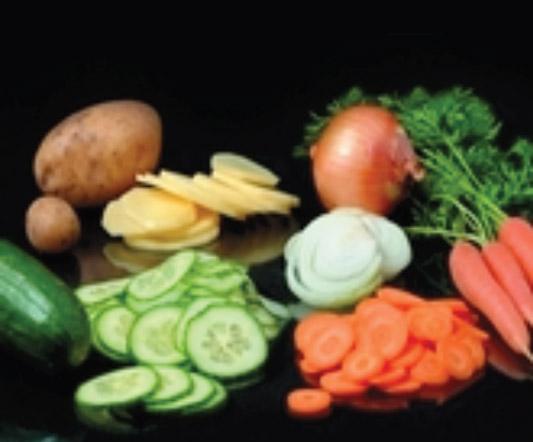Vegetable Shredders